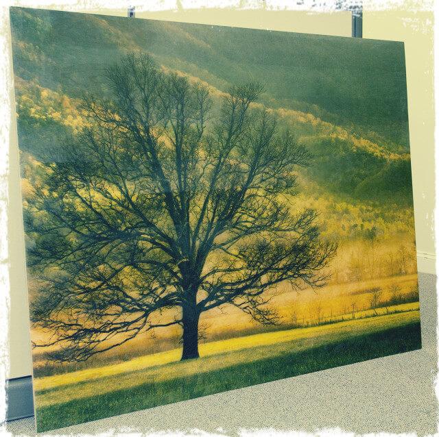 Wood-print-640x638